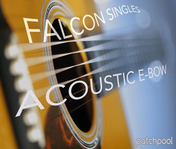 Falcon Singles - Acoustic E-Bow