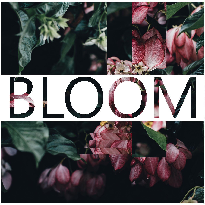Bloom (Kontakt)