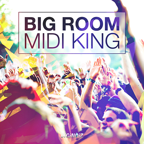 Big Room Midi King