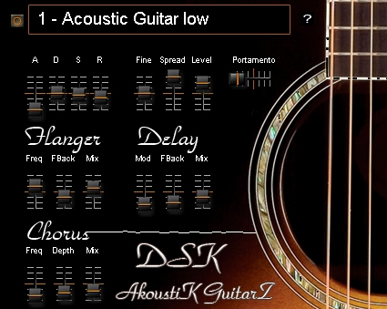 DSK AkoustiK GuitarZ