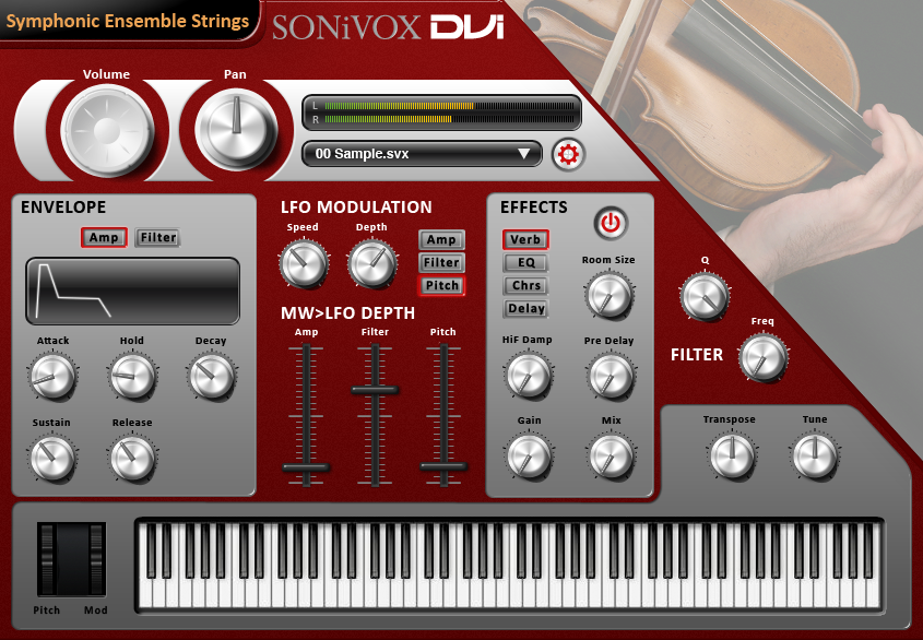 DVI Symphonic Ensemble Strings