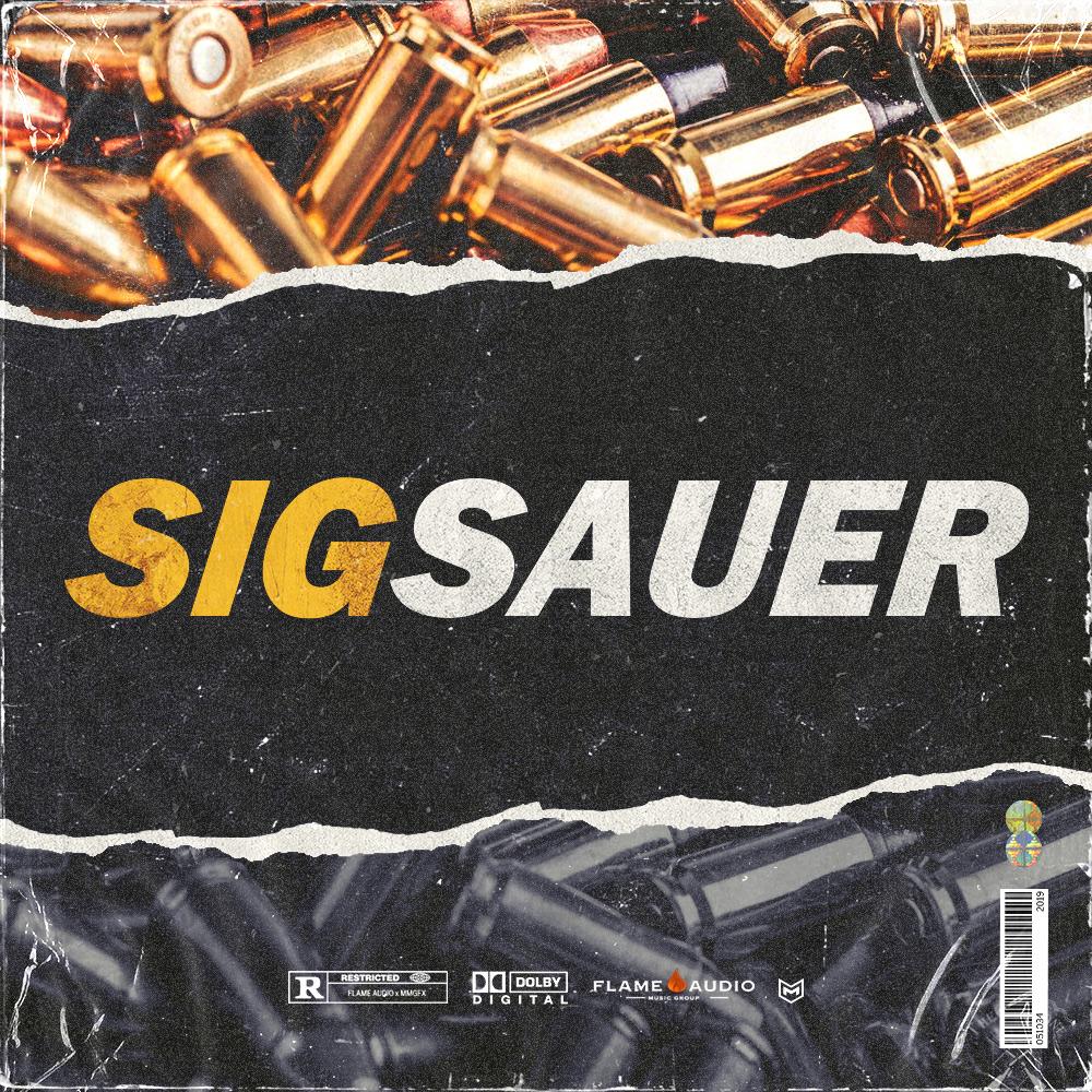 Sig Sauer (5 Construction Kits)