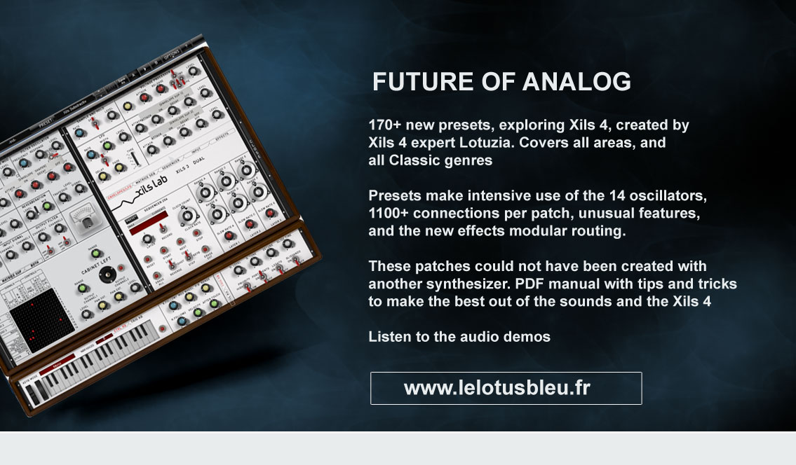 Future of Analog for Xils 4