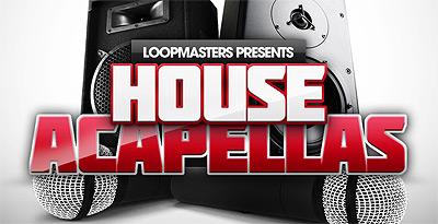 KVR: Loopmasters release