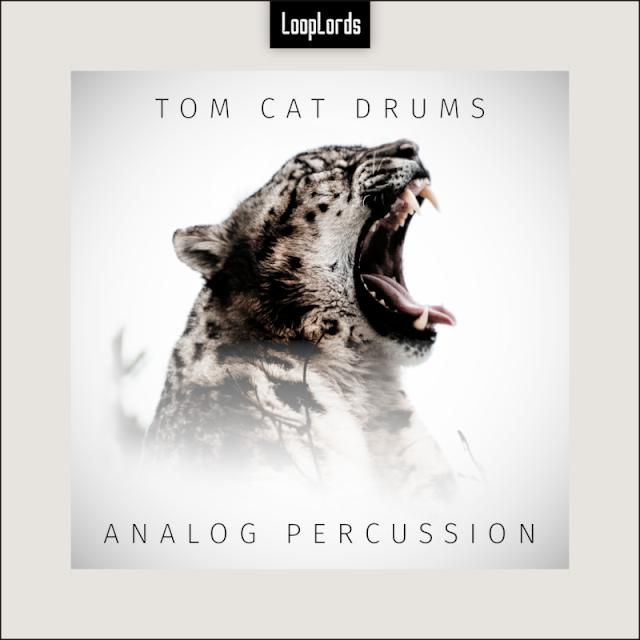 Tom Cat Drums