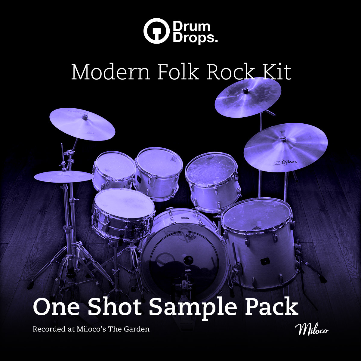 Modern Folk Rock Kit - One Shot Sample Pack
