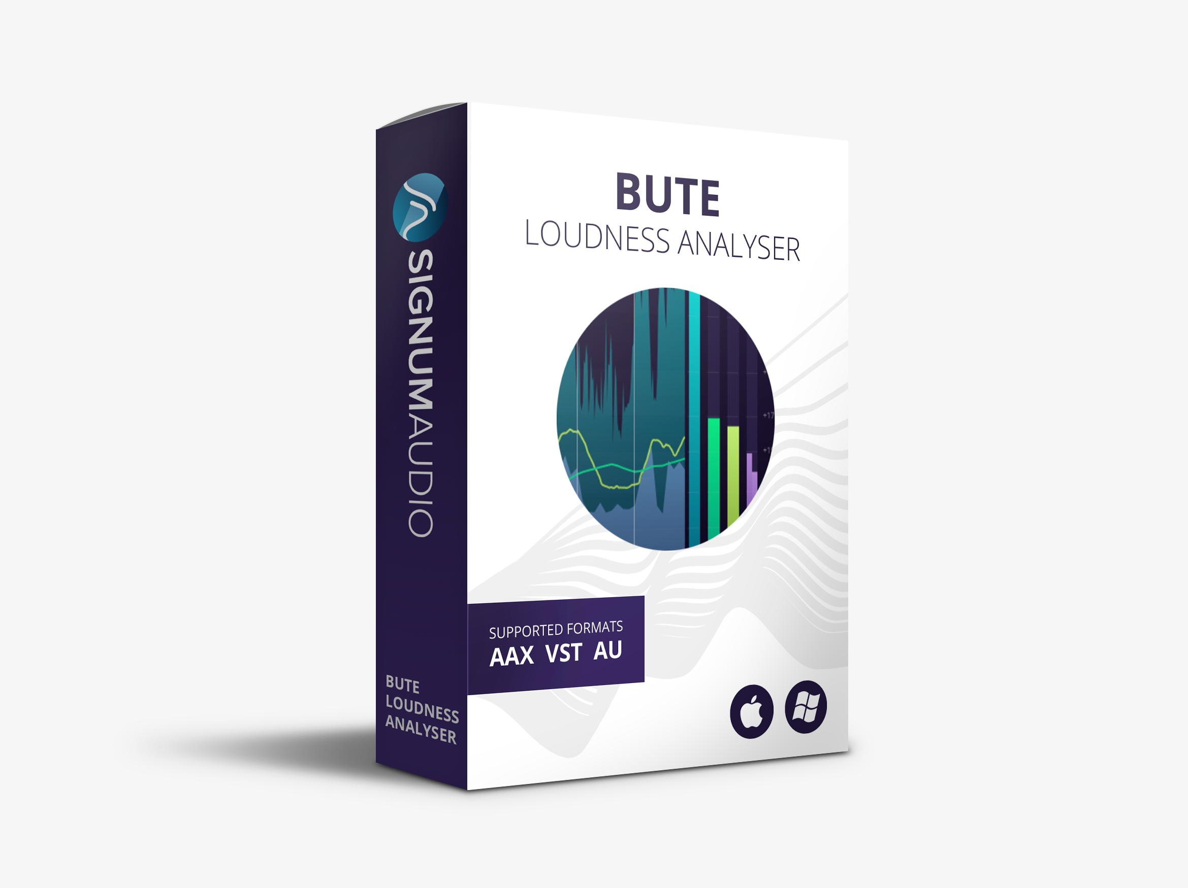 Bute Loudness Analyser (Surround)