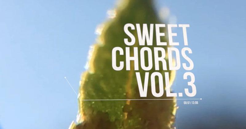 Sweet Chords Vol.3