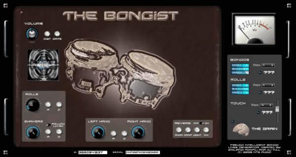 The Bongist
