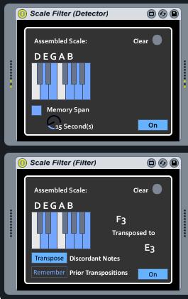 Scale Auto-Detector and Randomizing Filter