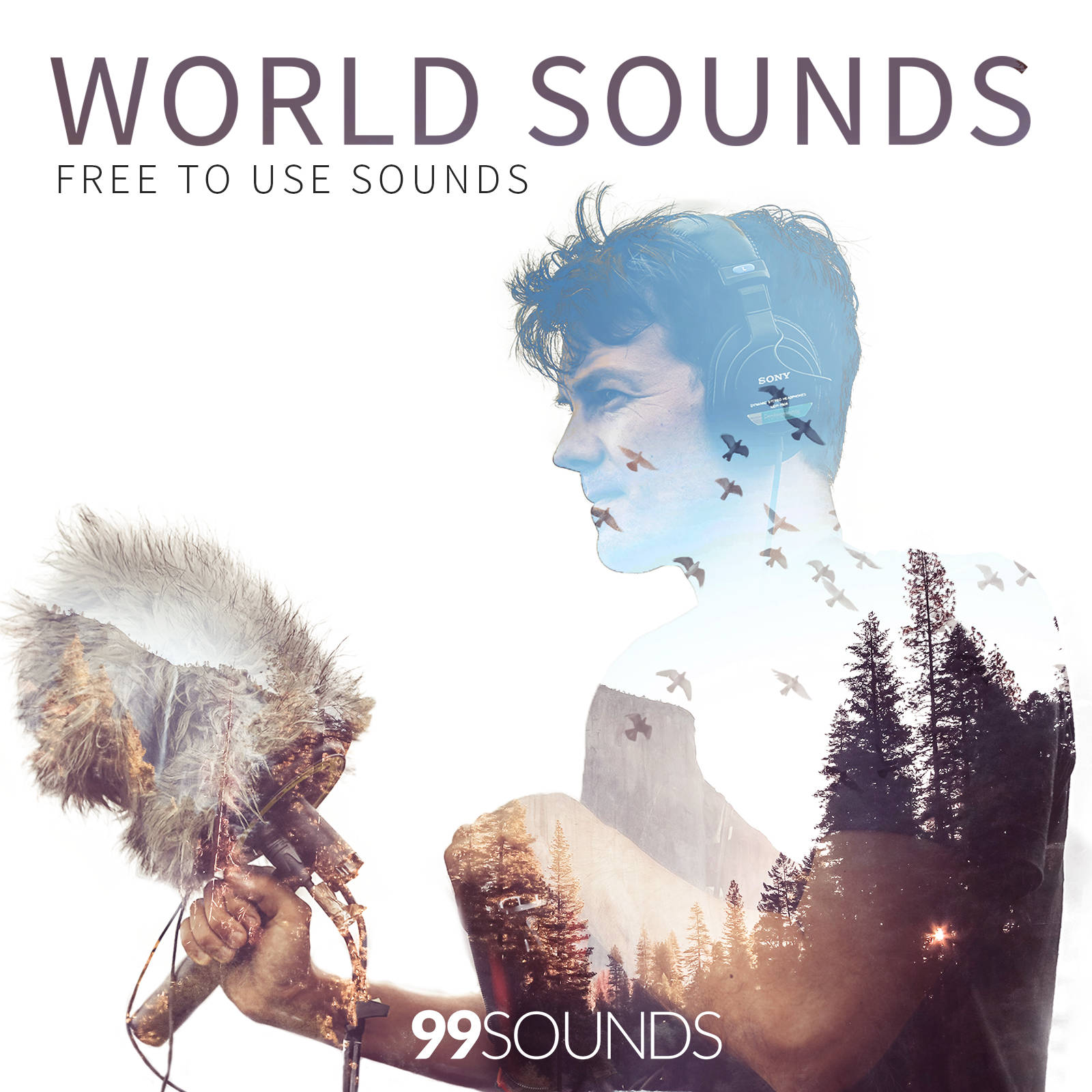 World Sounds