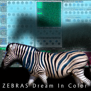 Zebras Dream in Color