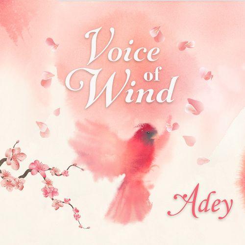 Voice of Wind: Adey
