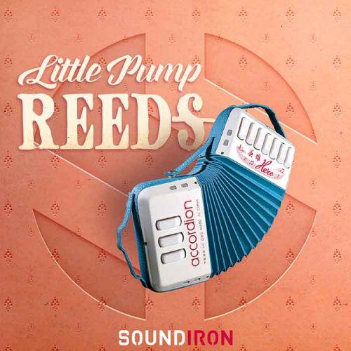 Little Pump Reeds