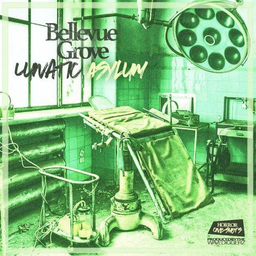 Bellevue Grove Lunatic Asylum