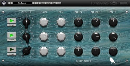 Birds Noise