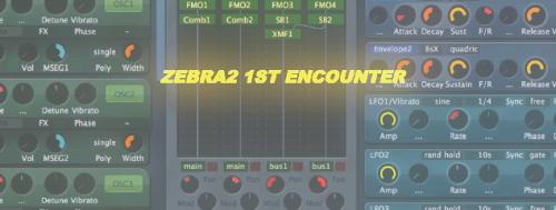 Zebra2 1st Encounter