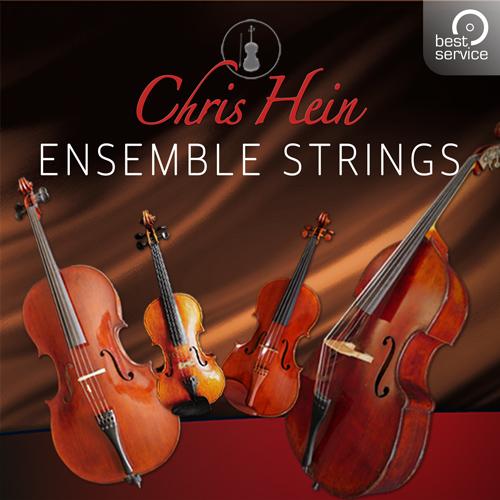Chris Hein Ensemble Strings
