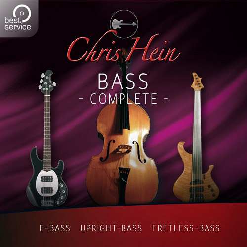 Chris Hein - Bass