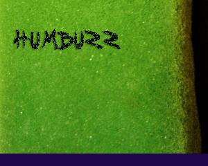 DTS049 - HumBuzz (Live Pack, WAV)