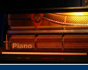 DTS048 - Piano (Live Pack, Universal)