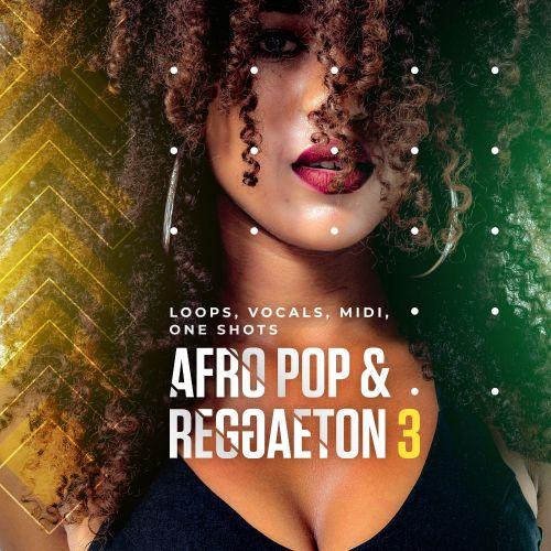 Afro Pop & Reggaeton 3