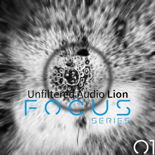 Focus 01 for Unfiltered Audio Lion