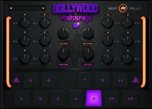 Bollywood Maharaja 2