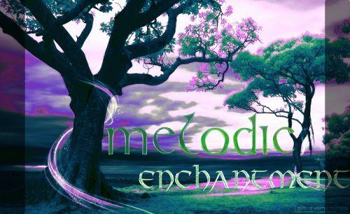 Melodic Enchantment Sound Bank - Hive