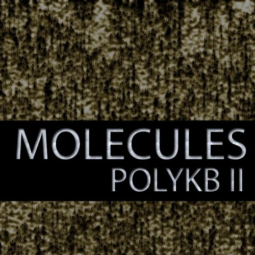 Molecules for PolyKB II