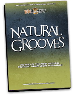 Natural Grooves   Pure Grooves for Rock, Acoustic Rock, Blues and Bluesy-Rock