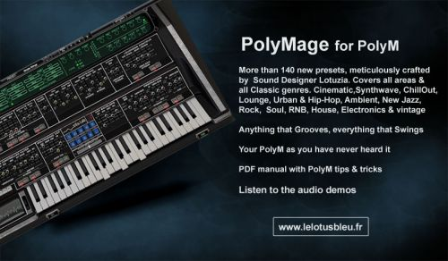 PolyMage for PolyM