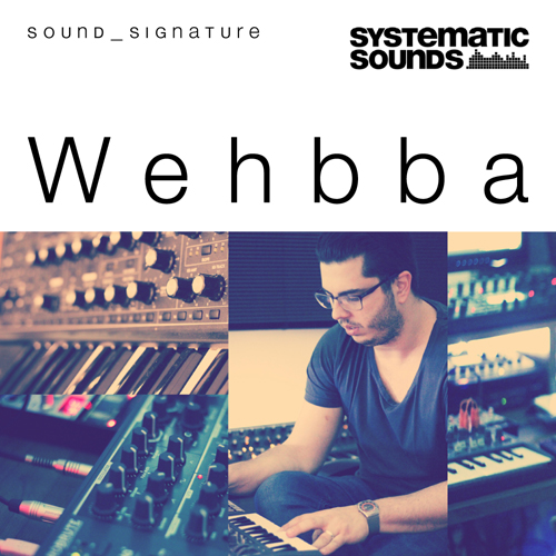 Wehbba Sound_Signature
