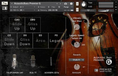 Acoustic Bass Premier G