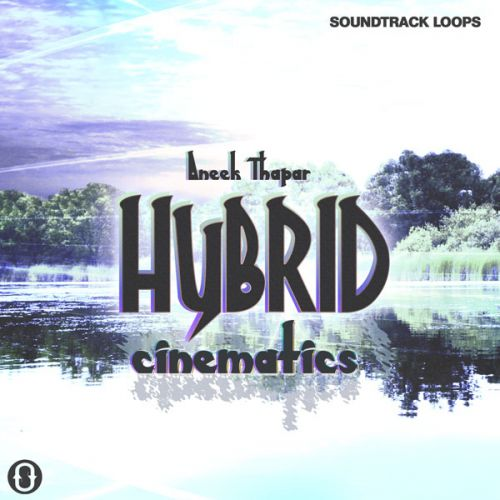 Aneek Thapar Hybrid Cinematics