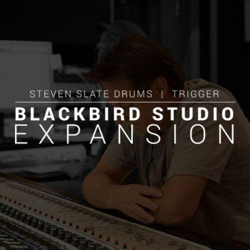 Blackbird Studios Drums