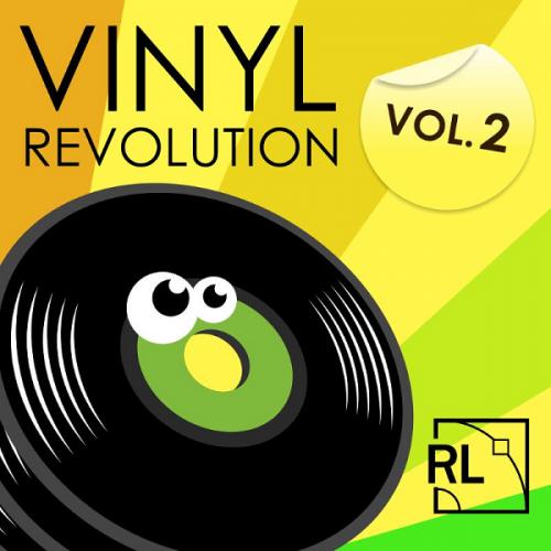 Vinyl Revolution vol.2