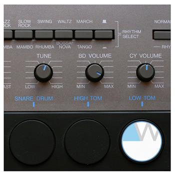 YAMAHA MR-10 : grey matter