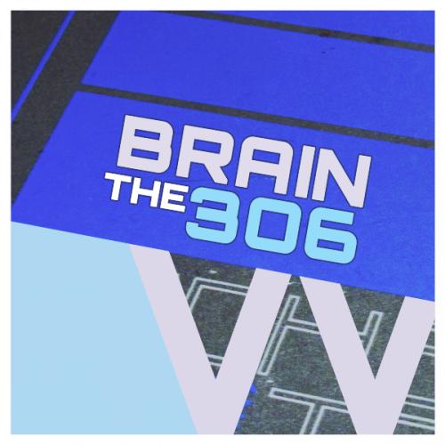 The Brain 306