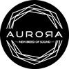 Aurora DSP