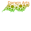 Darwin Arts