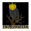 Owl O'Lantern