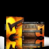 Django: Gypsy Jazz Guitar