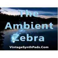 The Ambient Zebra