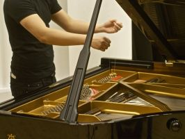 ARCO: Bowed and Plucked Piano Ensemble