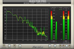 Auditor Pro