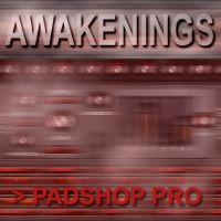 Awakenings PS