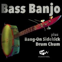 Bass Banjo plus BangOn Sidekick Drum Chum