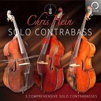 Chris Hein Solo Contrabass