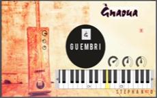 Gnawa - guembri V1 VST plugin software Form Morocco